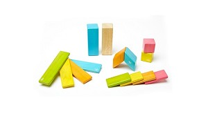 Tegu 14-piece Magnetic Wooden Blocks